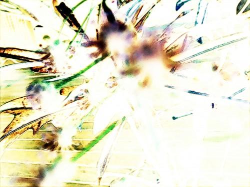 leafimplosion lofi